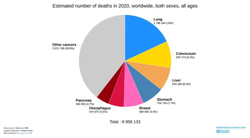 Global cancer deaths estimation in 2020