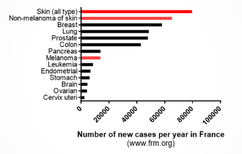 Number of new cancer cases per year in France